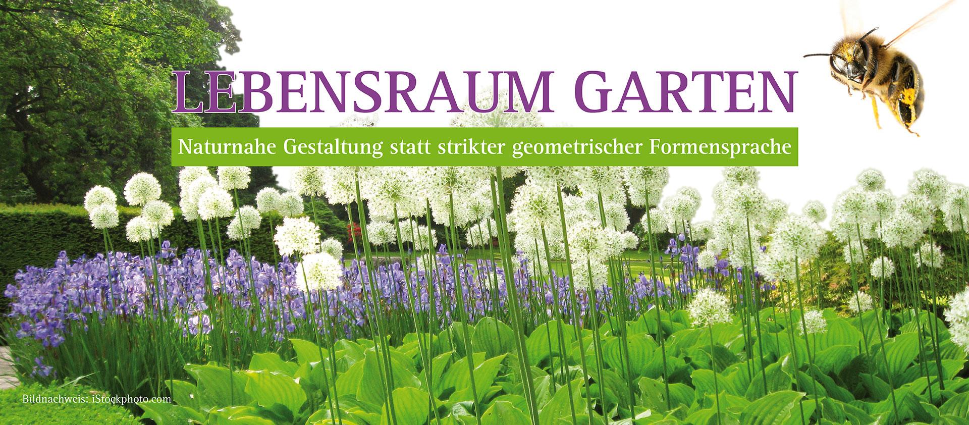 Lebensraum Garten Göllner Garten Und Landschaftsbau